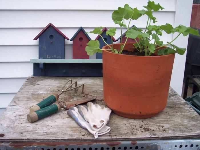 Que tipos de ferramentas utilizo para fazer minha horta?