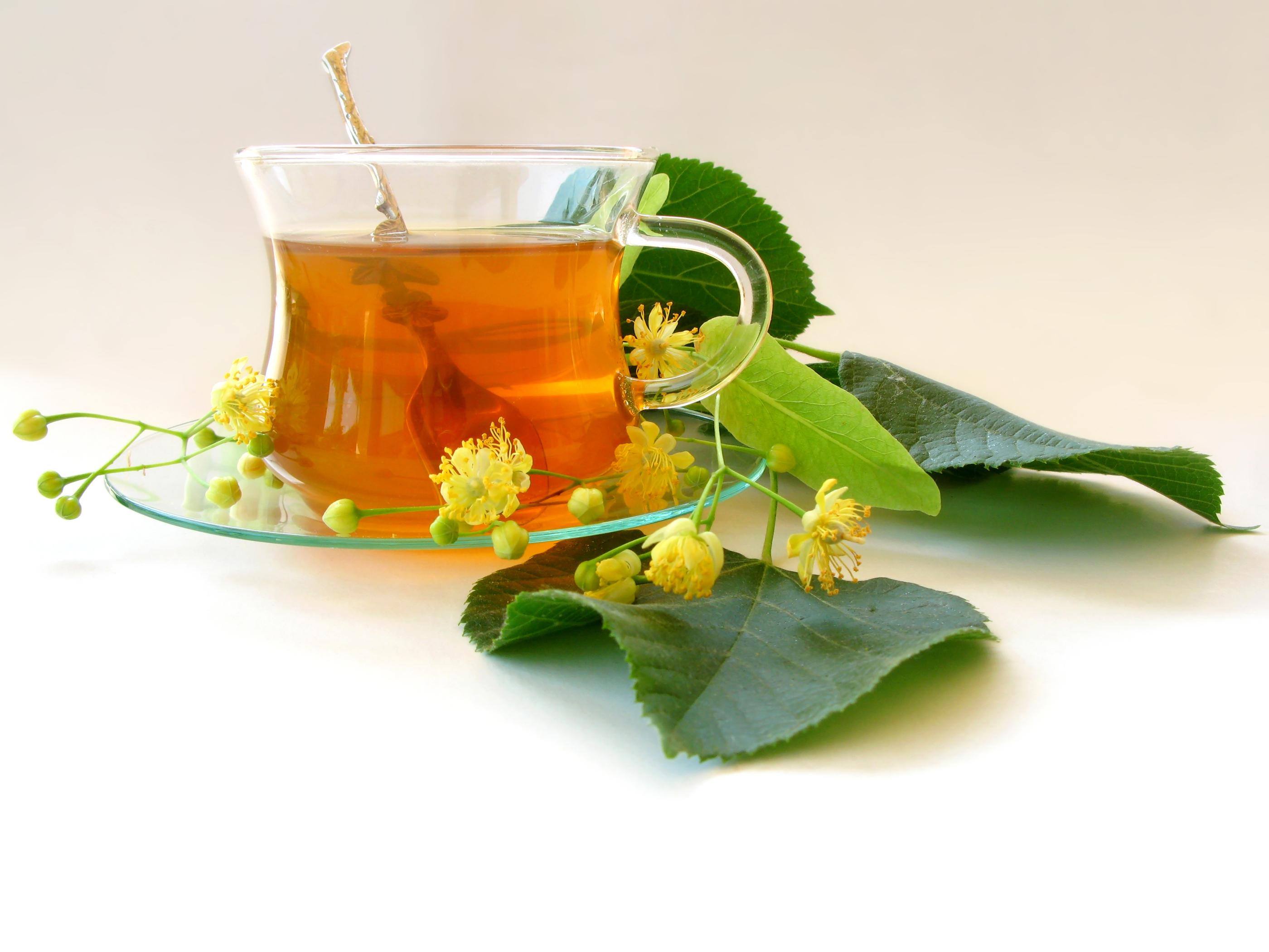 Plantas medicinais - xarope e chá - Plantas e Hortaliças