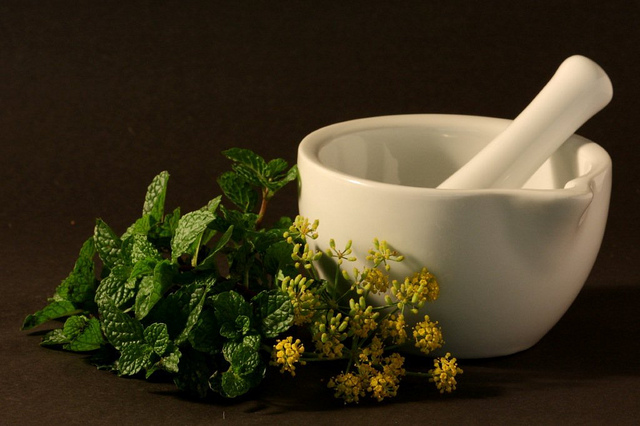 Plantas Medicinais Cura Tudo?
